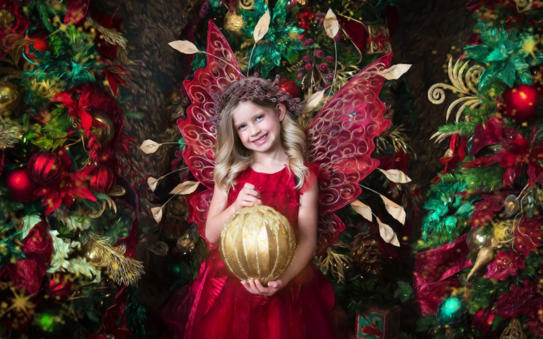 November: Enchanted Fairy Portrait Sessions